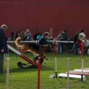 concours domvast 30.03 (5)