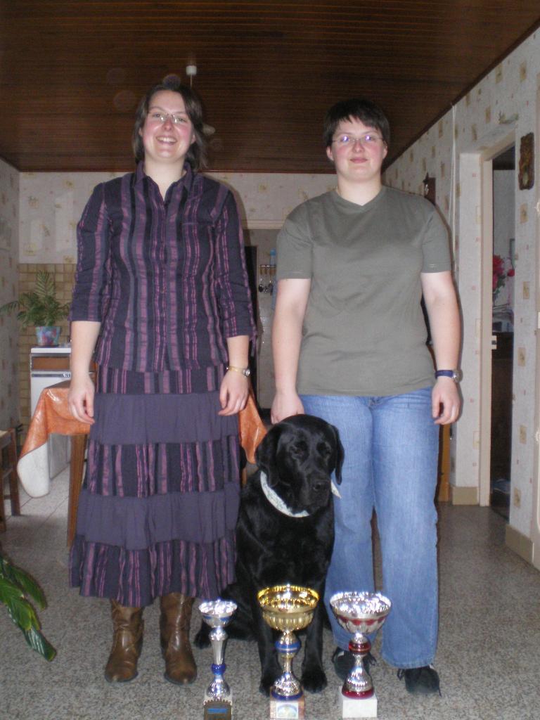 récompenses 2006